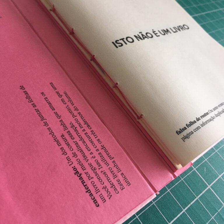 Isto não é um livro - Mayara Maluceli (3)