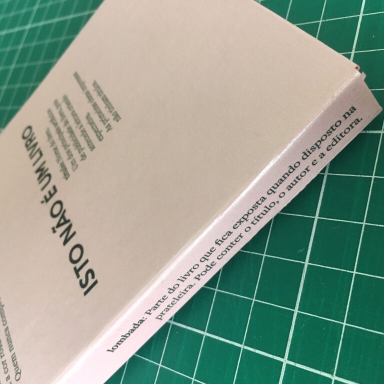 Isto não é um livro - Mayara Maluceli (5)